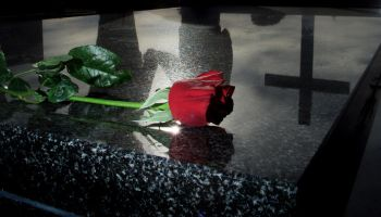 Red rose lying on a grave at a cemetery, 22 July 2002. NCH Picture by DARREN PA