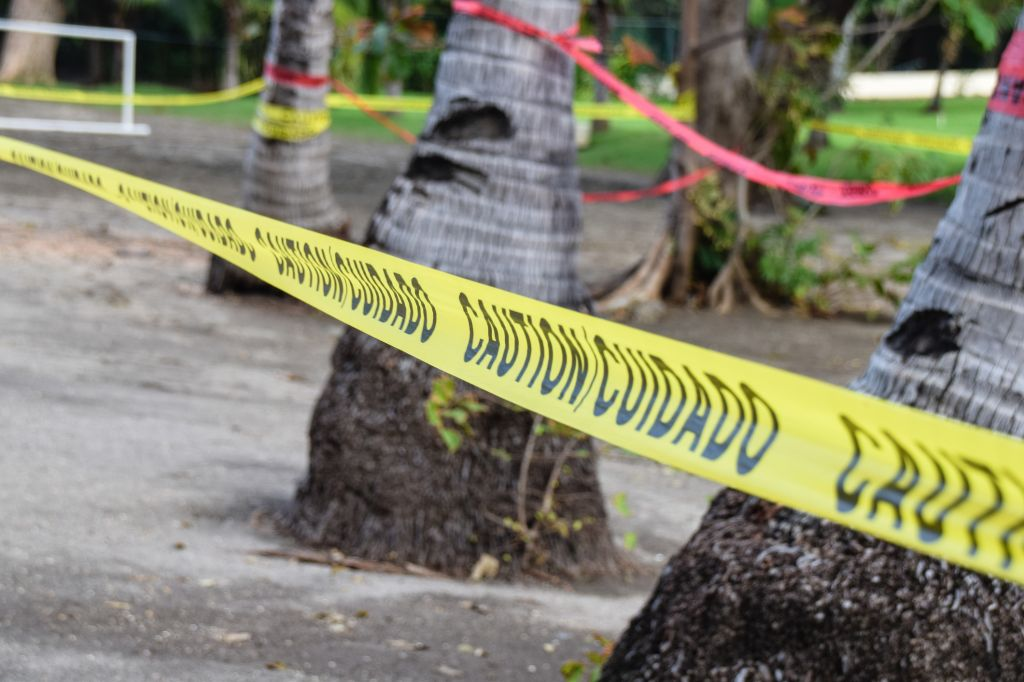 Close-Up Of Cordon Tape By Trees