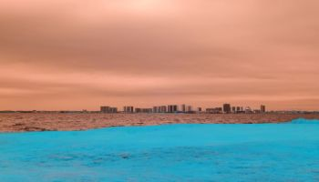 Ocean City Skyline IR - II
