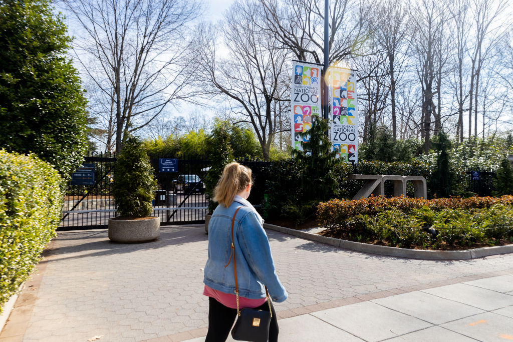 Maryland Zoo Hosting Adult-Only Happy Hours This Fall